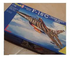 F16 Tiger meet