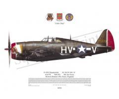 Πίνακας P-47 Thunderbolt